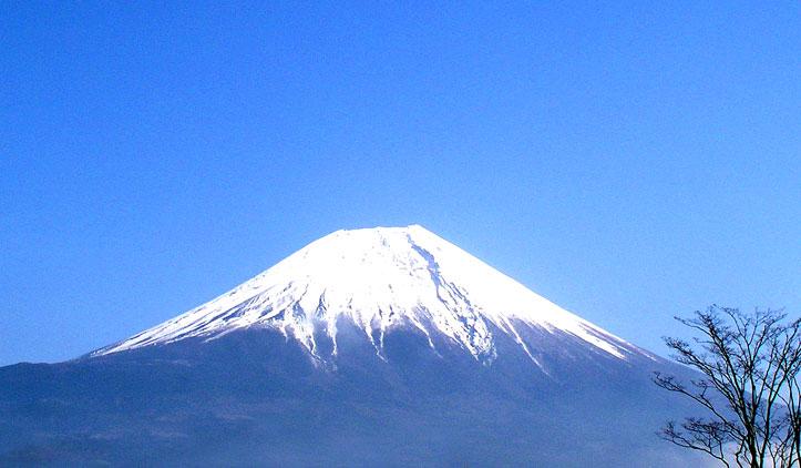 hanamizuki11